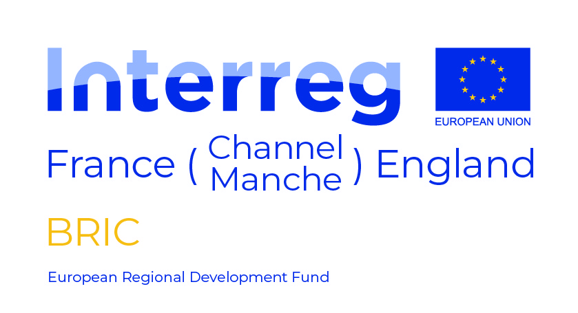 BRIC Project Logo ERDF-01